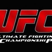 Os Treze no UFC